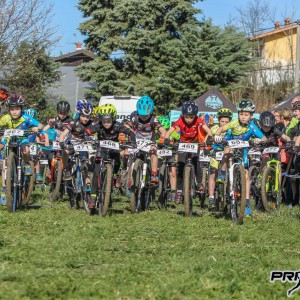 XC-Grici-2019-1-3953
